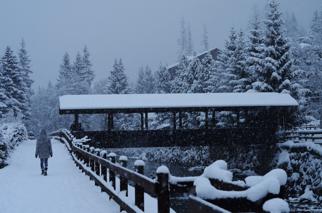 Kajsa i snön igen